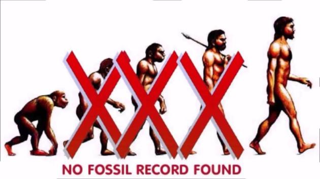 darwin evoluzione