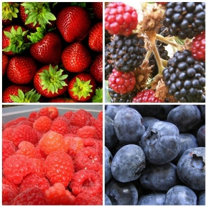 summer-seasonal-fruit-and-vegetables