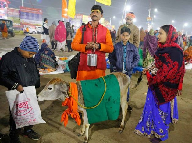 A-sadhu--or-Hindu-holy-man--walks-with-a-calf--as-devout-Hindus-wait-to-offer-prayers-and-take-holy-dips-at-Sangam--the-confluence-of-rivers-Ganges-and-Yamuna--on-Basant-Panchami-day-at-the-annua