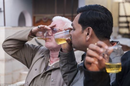 Due indiani che praticano urinoterapia con l'urina di mucca.