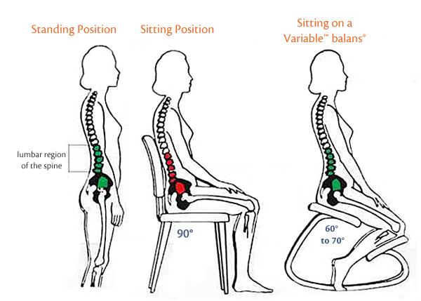 la-tua-spina-dorsale-sulla-variable-balans.jpg
